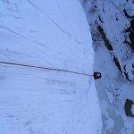2011-01-25-brindle_05
