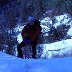 2011-01-25-brindle_06