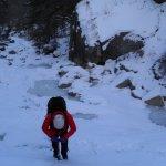 2011-01-25-brindle_12